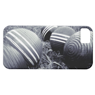 Croquet Balls - Monotone Case For The iPhone 5