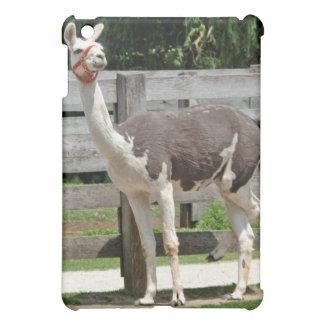 Cross-Legged Llama iPad Case