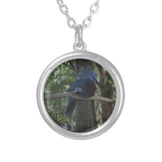 Crown Pigeon Round Pendant Necklace