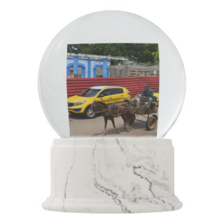 Cuba Horse Cart Old World and New Snow Globes