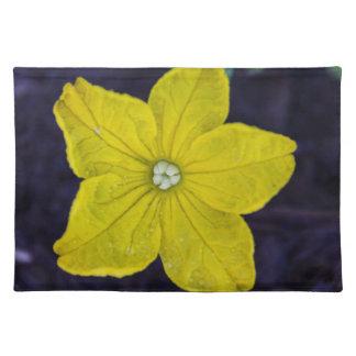 Cucumber Flower Placemats