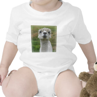 Cuddle Me - Alpaca Bodysuits