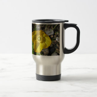 Cup thermus yellow flower