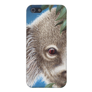 Curios Koala iPhone 5C iPhone 5 Covers