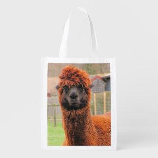 Curious Alpaca ~ Poly bag
