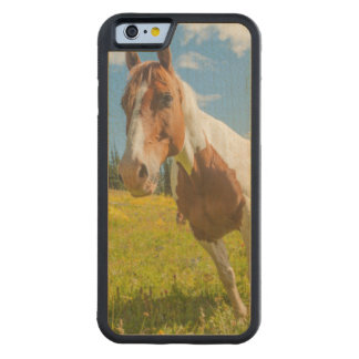 Curious horse in an alpine meadow in summer carved maple iPhone 6 bumper case