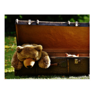 Curious Suitcase Kitten with Stuffed Teddy Postcard