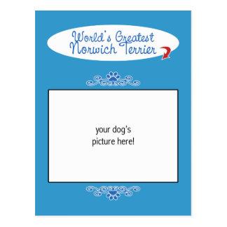 Custom Photo! Worlds Greatest Norwich Terrier Postcard