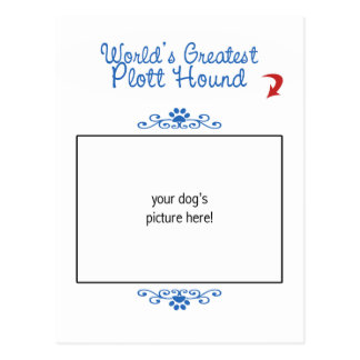 Custom Photo! Worlds Greatest Plott Hound Postcard