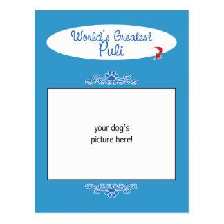 Custom Photo! Worlds Greatest Puli Postcard