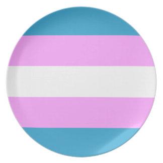 Custom Trans Flag Party Plates
