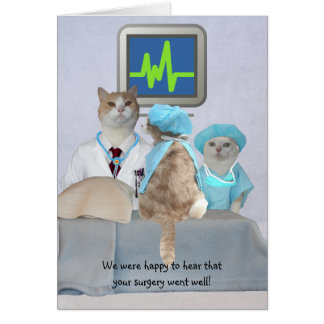 Customisable Funny Cats/Kitties Get Well Card