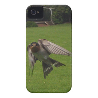Customise Product iPhone 4 Covers
