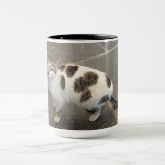 Customizable Cat mug - choose style & color