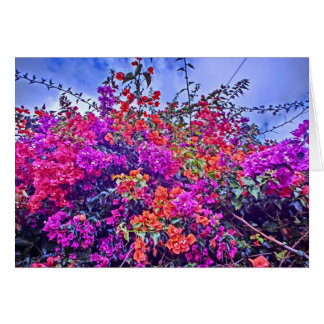 Customizable colorful flower notecard