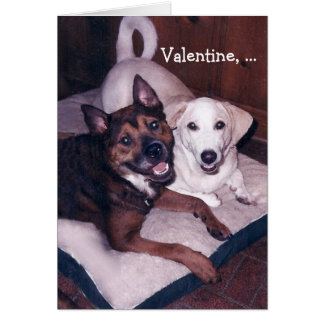 Customizable Cute Dogs Valentine Greeting Cards