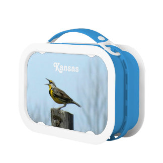 Customize Product Yubo Lunchboxes