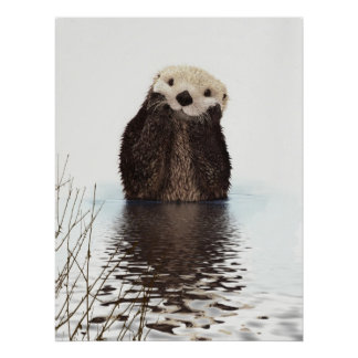 Cute adorable fluffy otter animal poster