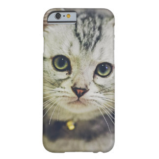 Cute As A Kitten Barely There iPhone 6 Case