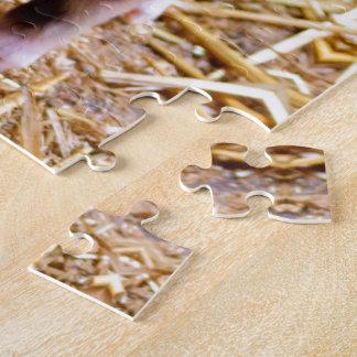 Cute Baby Piglet Farm Animals Babies Jigsaw Puzzle