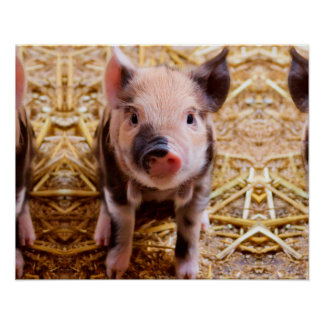 Cute Baby Piglet Farm Animals Babies Poster