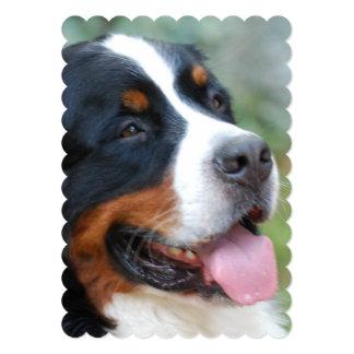 Cute Bernese Mountain Dog 5x7 Paper Invitation Card