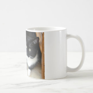 Cute black & white cat coffee mug