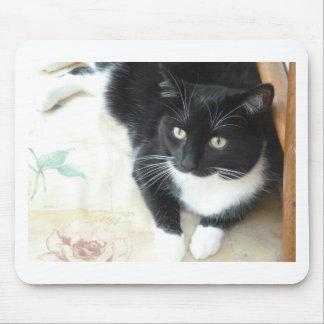 Cute black & white cat mouse pad