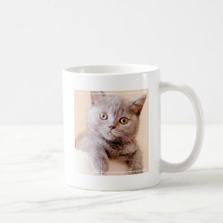 Cute British Shorthair Cat Coffee Mug