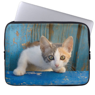 Cute Calico Cat Kitten Funny Curious Eyes Photo .. Laptop Sleeve