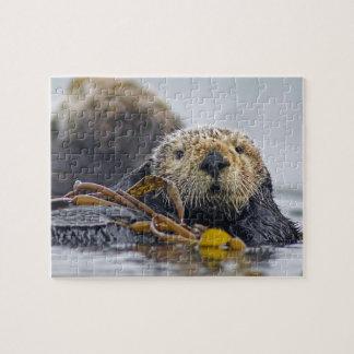Cute California Sea Otter - Wildlife Photography Jigsaw Puzzle