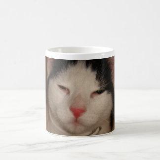 Cute Cat Basic White Mug