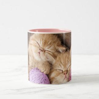 Cute Cat Black 11 oz Two-Tone Mug