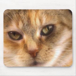 cute cat face 3 mousepads