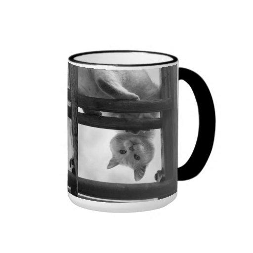 cute cat hanging upside down on ladder coffee mugs