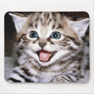Cute Cat Kitten M006 Mousepads