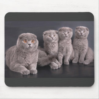 Cute cat with kittens mouse pad