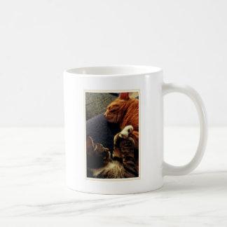 Cute Cats Holding Hands Basic White Mug