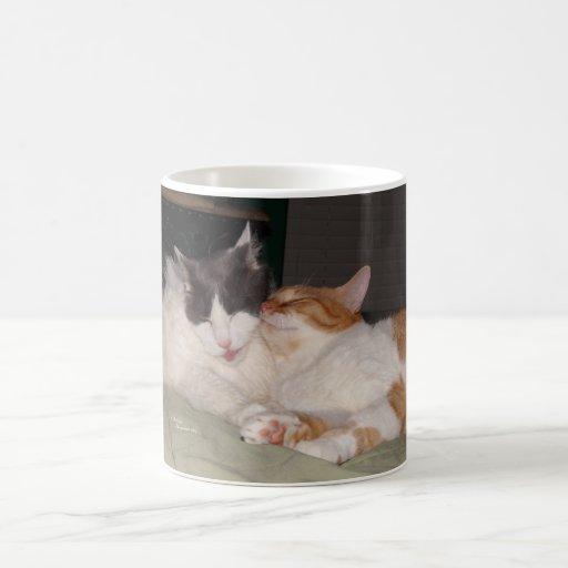 Cute Cats Sleeping Cats Rule Mug