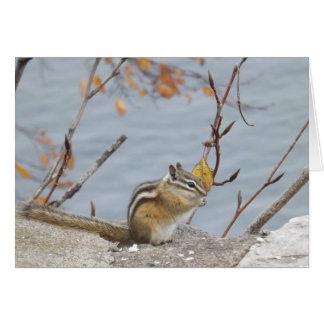 cute chipmunk card