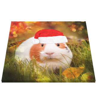 cute christmas guinea pig canvas print