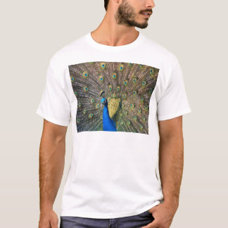 Cute colorful Peafowl T-Shirt