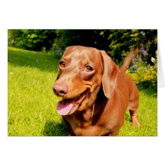 Cute dachshund smiley blank greeting card