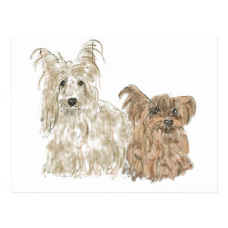 Cute Dogs Postcard