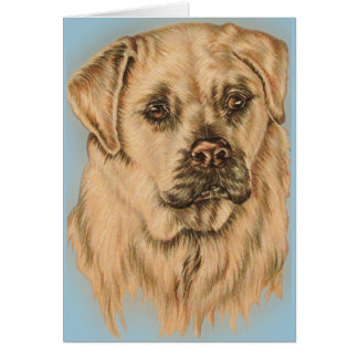 Cute Drawing of White Labrador Dog Card