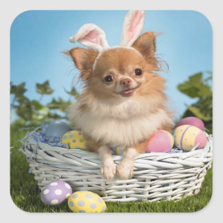 Cute Easter puppy in a basket of eggs Square Sticker