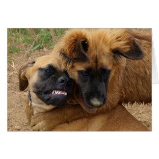 Cute English Mastiff & Leonberger Puppies Card