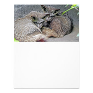 Cute Fox Couple Sleeping Photo Personalized Invite