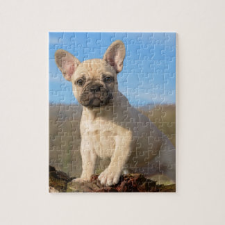 Cute French Bulldog puppy Jigsaw Puzzle