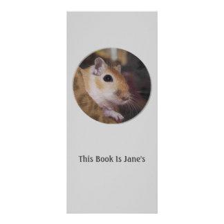 Cute Golden Pet Gerbil Full Color Rack Card